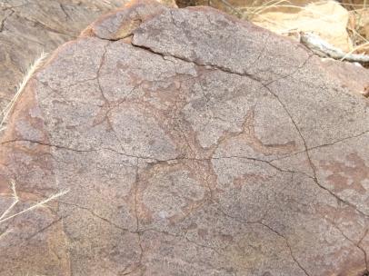 mutawintji heritage tours mutawintji human engraving