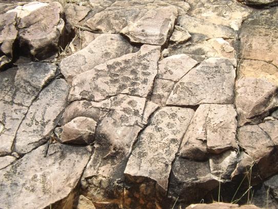 mutawintji heritage tours mutawintji emu eggs engraving