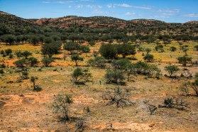 mutawintji heritage tours mutawintji amazing landscape